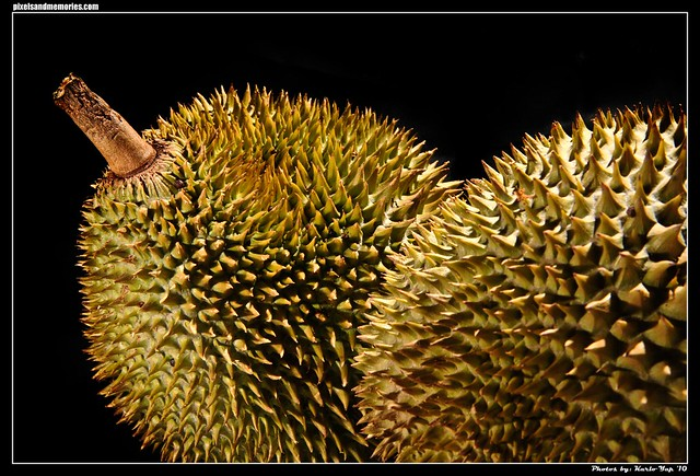 Durian 003