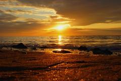 DSC02516 (aleksi50) Tags: sunset sun mer colour beach de soleil warm sony coucher alpha plage 550