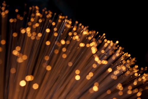 48|365 - Fiber Optics