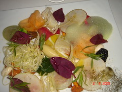 Crunchy vegetable salad , garlic oil vinaigrette and green onion mousse