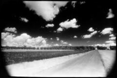infrared searches (A.Pepe) Tags: italy film clouds paper print nuvole kodak country searches infrared fiber campagne puglia carta durst hie pellicola infrarosso kentmere baritata m601