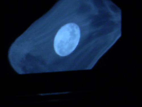Doble Luna  by Carlos Navarro C.