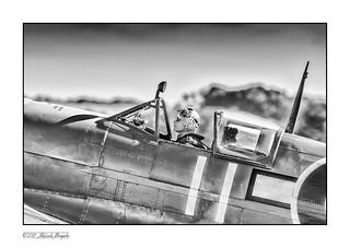 Seafire Pilot