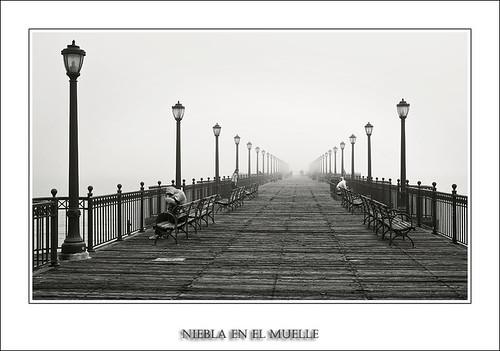 Niebla en el Muelle (Serie San Francisco)