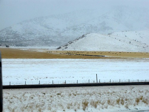 I15 in the Snow-5