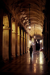 Lonely in San Marco's Hall