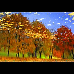 Autumn Abstract (JannaPham) Tags: park autumn red orange abstract reflection green water colors yellow canon garden eos golden russia moscow 5d kolomenskoye markii    project365  120365  jannapham
