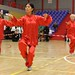 Dutch Tai Chi Festival-5