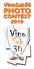 Logo VS30 Photo Contest 2010