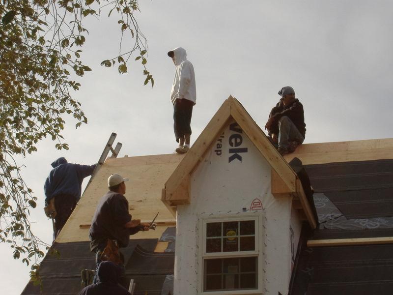 Litte Barn Roof 003