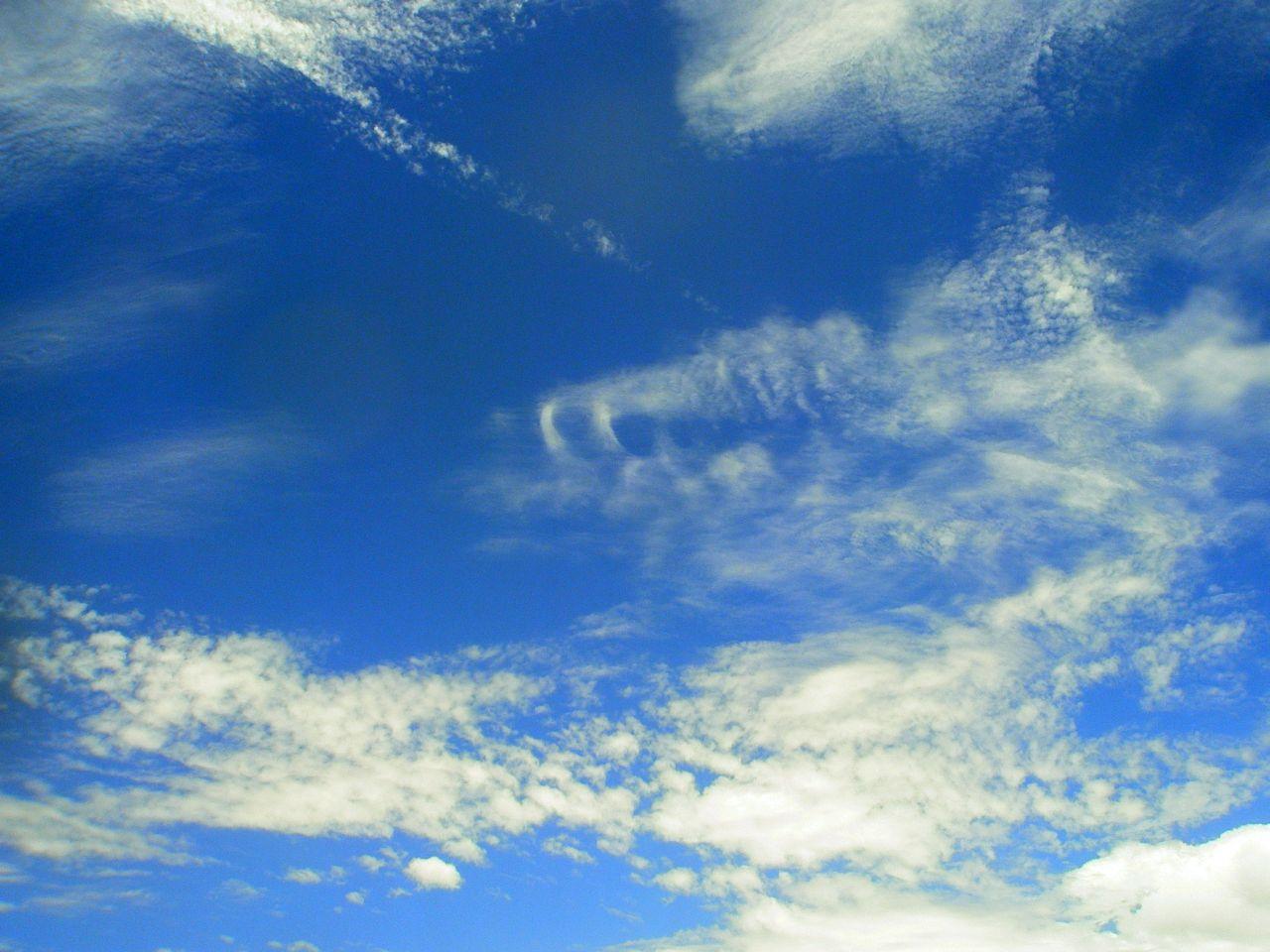 sky 1 lge