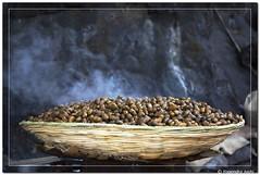 Steaming (Yogendra174) Tags: food india canon interesting peanuts maharashtra streetfood sinhagad pune joshi marathi yogendra canonrebelxs canond1000