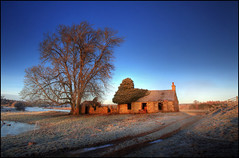 The Old House & The Red Tree (angus clyne) Tags: road blue sky house mist tree abandoned ice fog sunrise river dawn scotland frost track path farm cottage perthshire ruin ivy frosty tay ash dunkeld derelict murthly bothy flikcr veryblue topseven specialpicture colorphotoaward impressedbeauty boatlands kercock