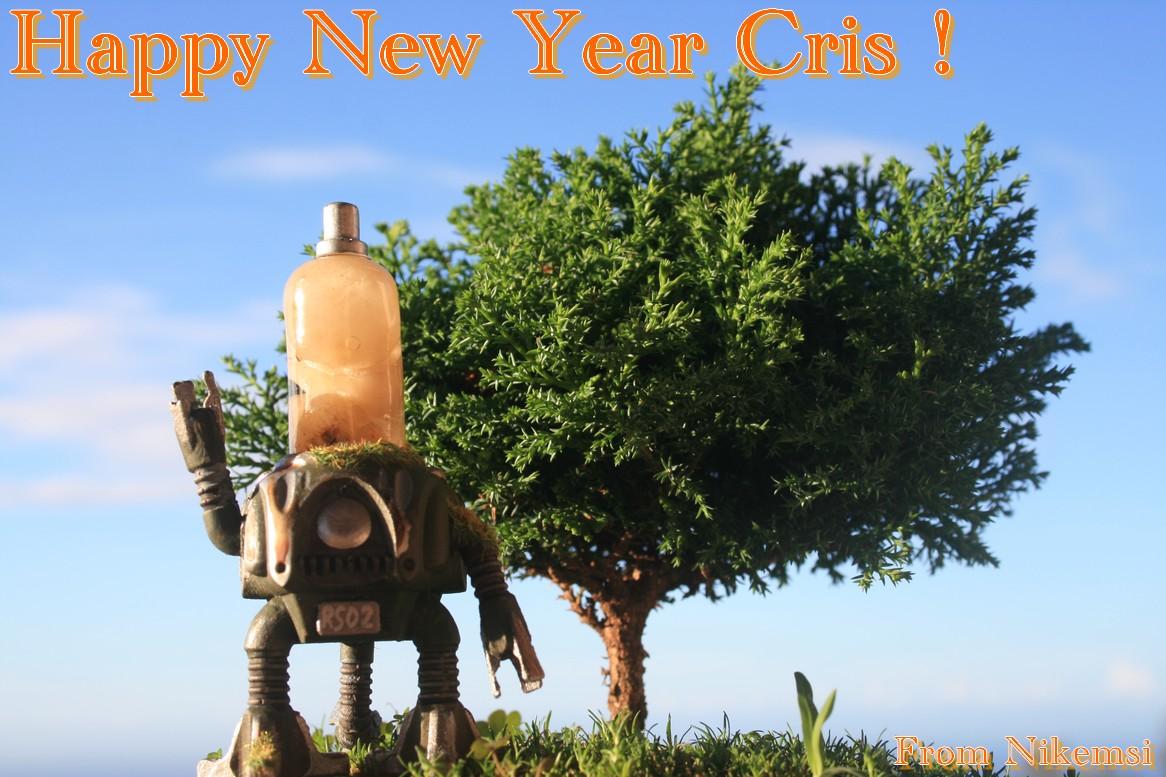 Happy New Year Cris Rose