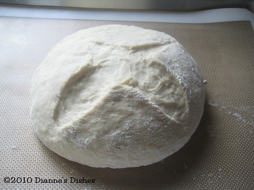 Easy Sour Dough Bread: Risen