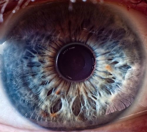 A Photographer's Eye