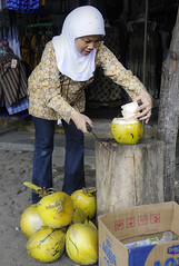 INDONESIAN, JAVA (MARIANO GARCIA MONZON) Tags: street portrait people panorama woman work shopping indonesia landscape java workers nikon women faces working panoramic panoramica job trade employee profession occupation d300 indonesians employ anawesomeshot pekerjaan marianogarciamg