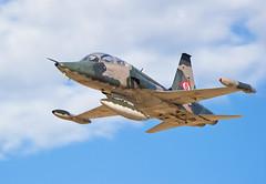 Northrop VF-5B (sjpadron) Tags: plane airplane freedom nikon fighter venezuela aircraft aviation military jet fav f5 avion caza grumman aviacion militaryaircraft northrop griffo vf5 freedomfighter d700 nikond700 ambv sjpadron sergiopadron sergiopadrón sergiojpadróna sergiojpadron northropvf5b vf5b abmv