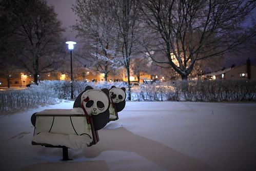0723 Pandas in snow