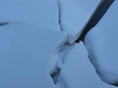 (eileenmak) Tags: calgary ice bowriver shouldicepark