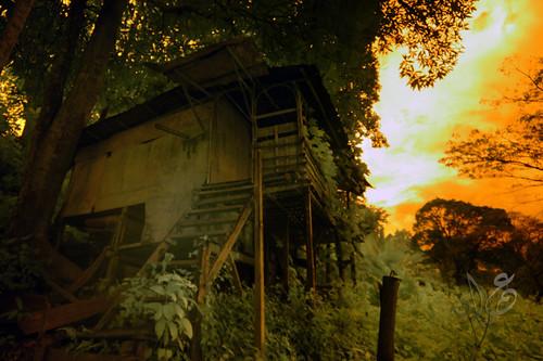Old House (IR) at dusk, Kuala Tahan