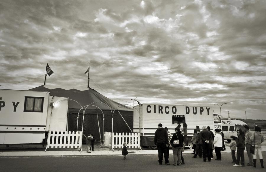 Tarde de circo