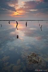 In Deep (Chris Sanan) Tags: longexposure sunset sea seascape beach nature water canon scenic kuwait canon1740l leefilterholder canon5dmarkii lee09nd lee77waadapterring lightbenders edafabeach lee09gndhe