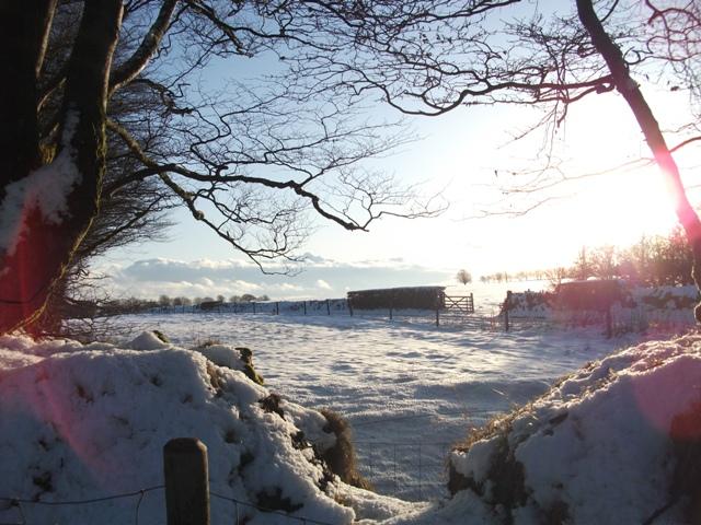 Exmoor snow 4
