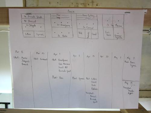Garden Plan 2010