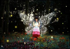 Fairy Tale (The Dream Seeker.) Tags: life woman color colour cute art girl female fairytale photo still cool image picture pic fairy fantasy shade shawdow tale     context      contast                         colorphotoaward