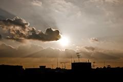 Sunlight penetrates every thin (Yousef Malallah) Tags: sunlight beautiful wonderful cool warm every kuwait thin الله غروب yousef كل مال الكويت جميل شروق الشمس أشعة جميلة رائع يوسف penetrates malallah خلاب رقيق تخترق