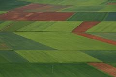 [フリー画像] 自然・風景, 田畑・農場, スペイン, 201105211300