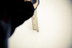 20-plus inches