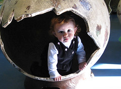 baby looking out from a fake dinosaur egg (dino_egg_crop)