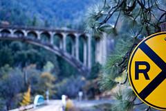 Dog Creek Bokeh (ronWLS) Tags: bridge delete10 delete9 delete5 delete2 bokeh delete6 delete7 rail delete8 delete3 delete delete4 save save2 railroadxing dogcreekbridge