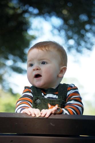 Baby Tommy Nov. 2009 043