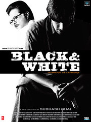 Black and White poster
