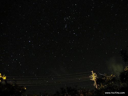 roctina 拍攝的 9811190004。