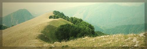 raluralu-banner