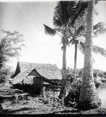Thatched homes on Salangdeke Island, north Halmahera
