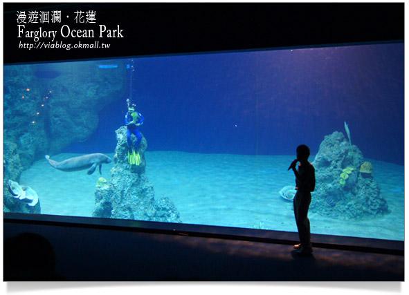 花蓮海洋公園一日遊23