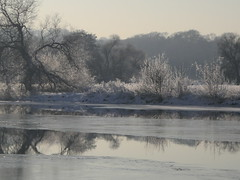 Frozen Ruhr II. (abudulla.saheem) Tags: schnee winter snow ice river germany nikon nrw eis ruhr mülheim icycold flus riverruhr eisfläche coolpixl12 january2009 abudullasaheem icecoveringtheriver