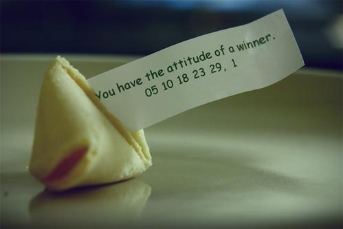 {49:365} winner