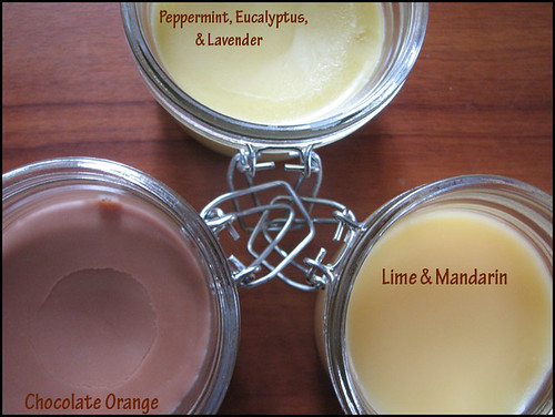 Lip-Balms-by-Artisan-Soaps(a)