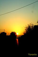 """60/365 """"Por do Sol Algarvio"""" (Vxit_Ptgpy) Tags: pordosol arvores casas fios entardecer"""