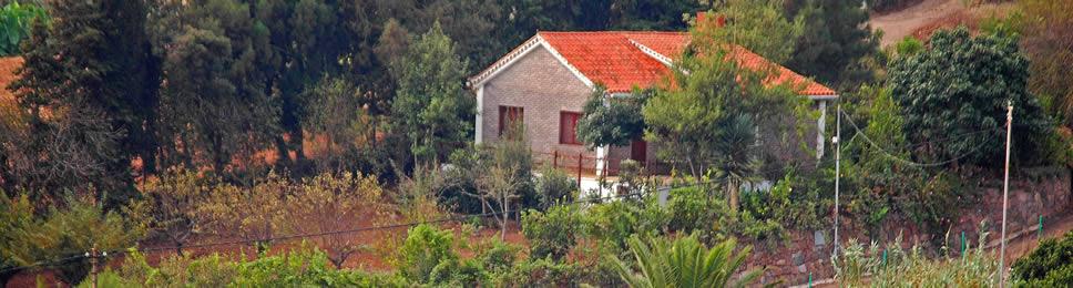 El Hueso, Casa in Teror,  Gran Canaria, Agriturismo Gran Canaria, Case rurali, Case in campagna, Alloggi rurali