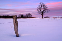 Hickory on the fence (J-Parkes) Tags: pink blue winter sunset snow tree rural james pentax pennsylvania farm country jim pa clarion parkes da1855 k200d