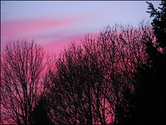 Pink At Night Sailors Delight (Sue90ca Just A Little Rain Please!) Tags: pink sunset canons5is