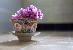 calligraphy (penwren) Tags: pink flowers stilllife canon vintage ceramic march pretty pattern antique chinese tiles bergenia calligraphy porcelain naturemorte cupandsaucer 24105mm paintedflowers penwren canoneos5dmarkll bergeniaflowersfromthegarden