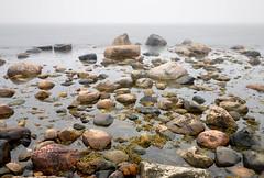 resund stones (claustral) Tags: skne nikon sweden d200 flickrmeet kullaberg mlle nd110 kullen100327